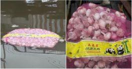 Hải quan Đài Loan phát hiện 8 tấn tỏi nhập lậu từ Trung Quốc